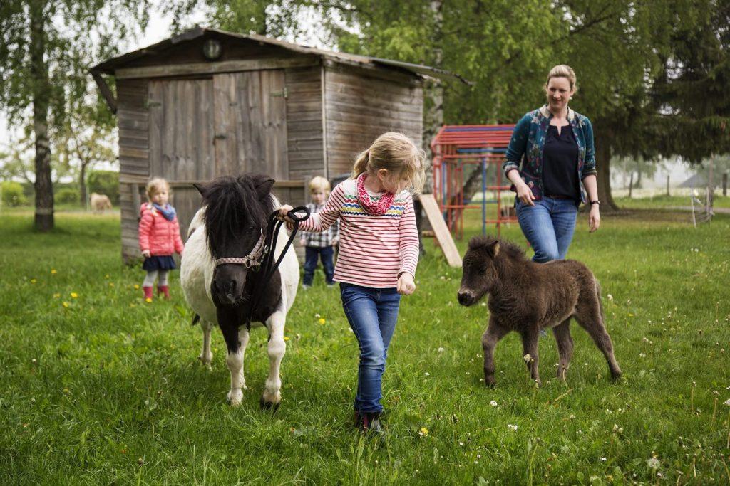 Bilderbuchbauernhof im Sauerland - Famlienurlaub auf dem Land